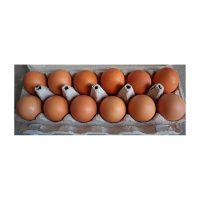 Eggs, meat & vegan alternatives